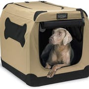 Top 10 Best Dog Crates to Buy Online 2020