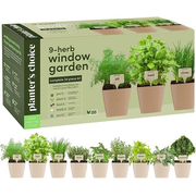 Top 10 Best Indoor Garden Kits in 2021 (AeroGarden, Back to the Roots, and More)