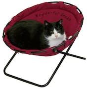 Top 10 Best Cat Beds to Buy Online 2020