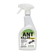 Top 10 Best Ant Killers in 2021 (Ortho, Combat, and More)