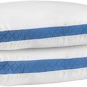 Top 10 Best Hypoallergenic Pillows in 2021 (Queen Anne, Snuggle-Pedic. and More)