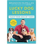 Top 10 Best Dog Training Books in 2021 (Zak George, Cesar Millan, and More)