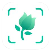 Top 10 Best Apps to Identify Plants in 2021 (iNaturalist, PlantSnap, and More)