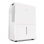 Top 10 Best Dehumidifiers in 2021 (Midea, Eva Dry, and More)