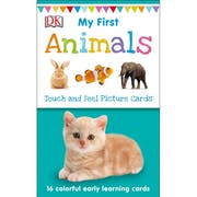 Top 10 Best Flashcards for Toddlers in 2021 (Scholastic, Mudpuppy, and More)