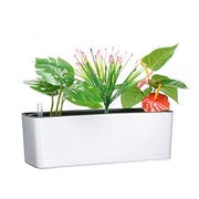 Top 10 Best Self-Watering Planters in 2021 (Lechuza, Gardenix, and More)